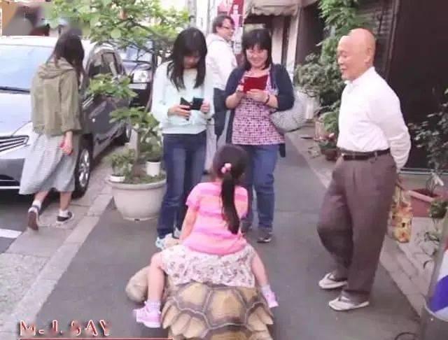 Ông lão người Nhật nuôi con rùa nặng 70kg, quãng đường 5 phút đi mất 3 tiếng: Sống chậm lại, cuộc đời quả thực đáng yêu hơn bạn nghĩ - Ảnh 17.