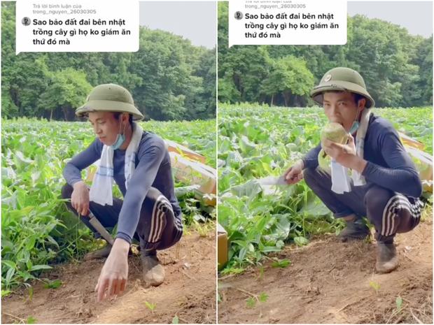 Một người Việt ở Nhật khoe rau củ ở đây sạch tới nỗi ăn luôn ở ruộng, dân mạng nói gì mà ai đọc cũng thấy phục? - ảnh 1