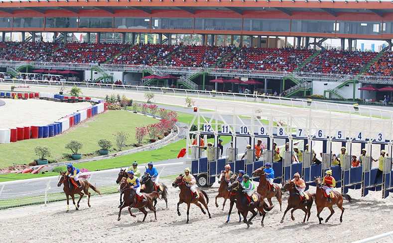 Cận cảnh trường đua ngựa 2.300 tỷ độc nhất vô nhị, xây dựng sau một câu ngẫu hứng của bà Phương Hằng