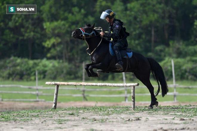 CSCĐ Kỵ binh: Sau hơn một năm huấn luyện, từ ngựa hoang đến những màn vượt rào, bổ nhào, phi nước đại bắn súng đỉnh cao - Ảnh 8.