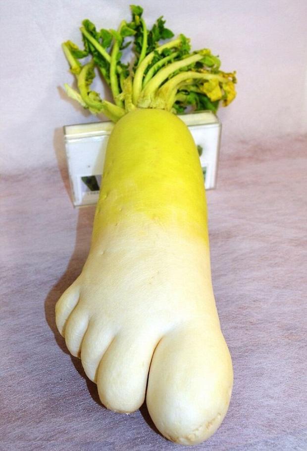 Tuyển tập 15 rau củ quả có ngoại hình phát khiếp, mang về không dám nấu ăn vì sợ chúng nó... đánh cho - Ảnh 2.
