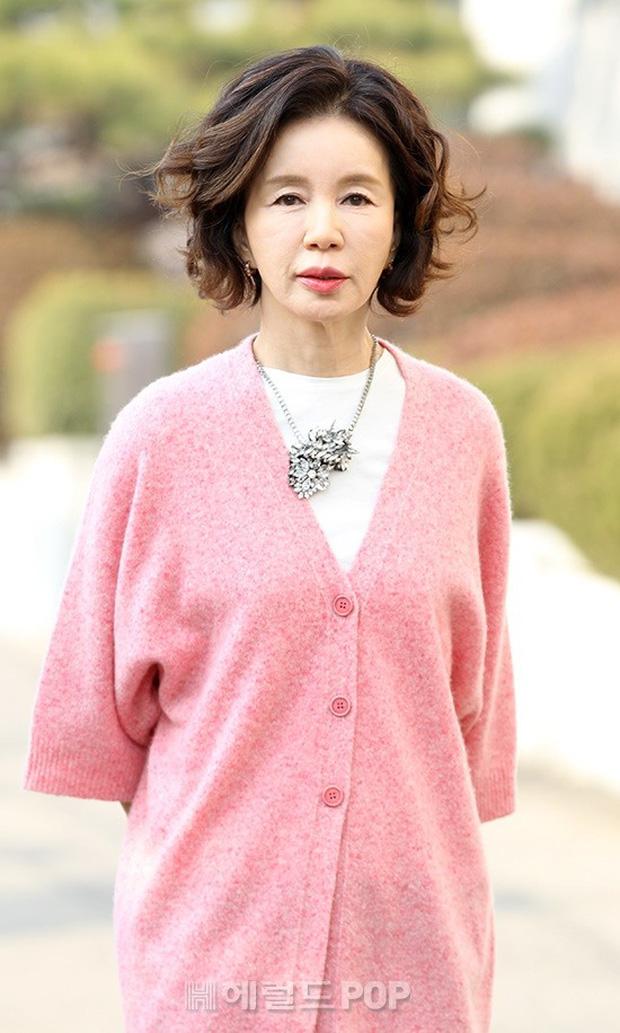 Không phải Son Ye Jin, đây mới là tình đầu quốc dân đời đầu xứ Hàn: Gia tài phim siêu khủng, U70 vẫn đẹp rạng ngời - Ảnh 2.