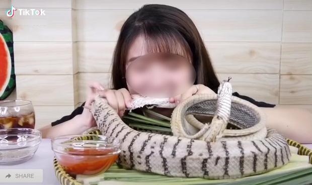 Cô gái ăn thịt rắn nguyên con khiến cư dân mạng thi nhau tranh cãi: Người cho rằng quá kinh dị, người nói có ai cấm đâu mà sợ - Ảnh 1.