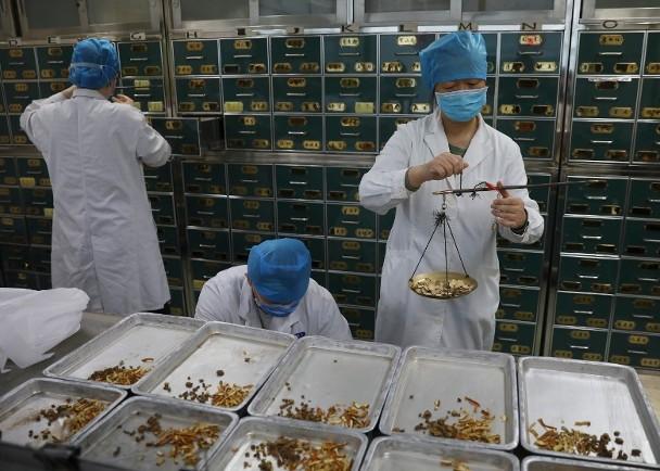 Bài thuốc Đông Nam dược phòng chống Covid-19 được Trung Quốc sử dụng rộng rãi nhất - Ảnh 5.