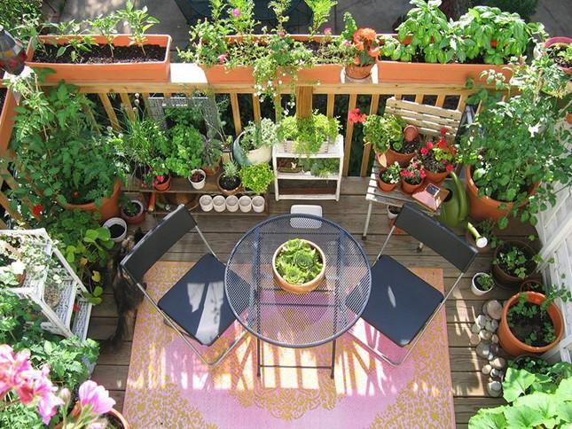 Cách thiết kế vườn rau sân thượng mùa dịch vừa đơn giản lại đẹp mắt - Ảnh 8.