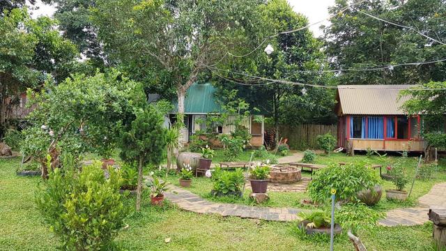 Bỏ phố về rừng làm farmstay: Hết lo mất trộm đến lo mưa bão  - Ảnh 1.