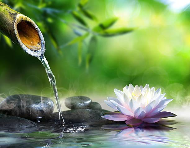 Triết lý sống đơn giản của người Nhật: Luôn đổ đầy bát trước khi trả lại và bài học tu dưỡng bản thân, mở rộng đường đời mà ai cũng nên học tập - Ảnh 1.