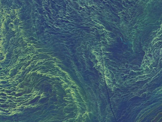 Nghiên cứu mới: Tốc độ quay của Trái Đất ảnh hưởng trực tiếp tới việc xuất hiện sự sống - Ảnh 6.