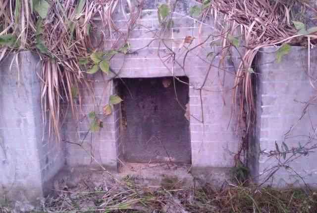 Khai quật mộ cổ 500 năm của nhà sư: Không có bóng dáng báu vật nhưng đặc biệt xuất hiện hai con quái thú còn sống! - Ảnh 1.
