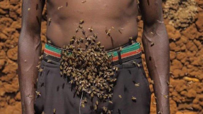Người đàn ông tự xưng là Vua ong: điều khiển được ong như Tiểu long nữ, cả đời chưa bao giờ bị ong đốt - Ảnh 5.