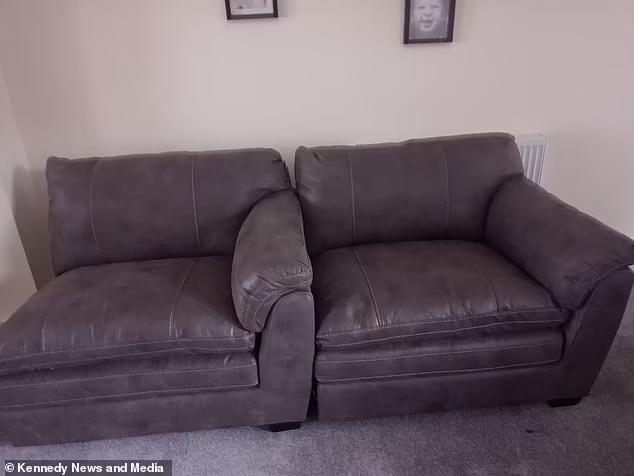 Đặt mua sofa qua mạng, sau 4 tháng chờ đợi người đàn ông dở khóc dở cười với món hàng nhận được - Ảnh 2.