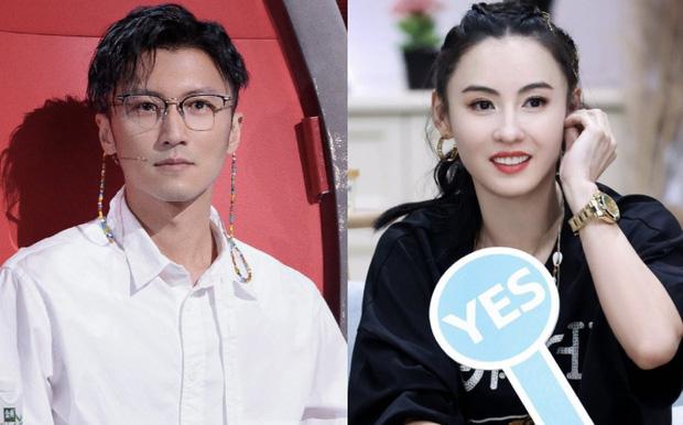 Không phải vì Triệu Vy, lý do Tạ Đình Phong vội bỏ quốc tịch được tiết lộ, Trương Bá Chi hưởng ké 280 tỷ/năm - Ảnh 3.