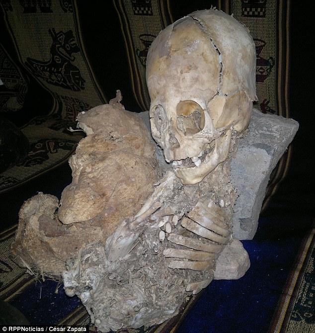 Khảo cổ học Peru phát hiện hộp sọ khổng lồ, kết quả trả về khiến tất cả chết lặng: Đây không phải ADN của con người  - Ảnh 1.