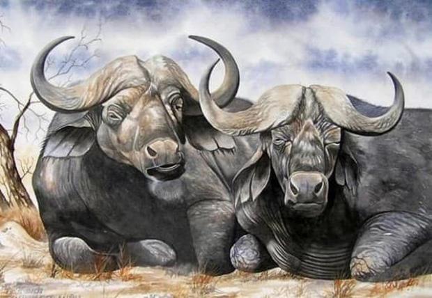 3 con giáp khổ trước sướng sau, càng lớn tuổi càng ổn định và sung túc, tài lộc đến muộn chứ không phải không đến - Ảnh 3.