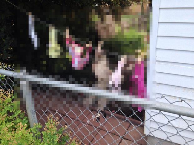 Người phụ nữ kiện hàng xóm vì tội phơi nội y lộ liễu, nguyên cớ phía sau khiến cảnh sát sững sờ - Ảnh 1.