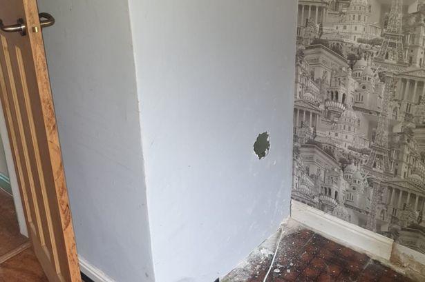 Kinh hãi phát hiện bức thư chết chóc trên tay búp bê vải trong căn nhà cũ - Ảnh 1.