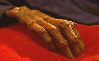 Cụ già qua đời 24 giờ mà cơ thể vẫn còn ấm, nhiều năm sau thi hài vẫn còn nguyên vẹn - Chuyên gia vào cuộc tìm thấy 1 chất rất độc!