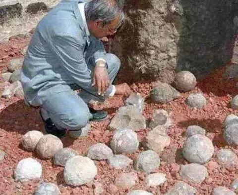 Đem những viên đá tròn đi kiểm định, chàng trai khiến chuyên gia khóc ròng vì sinh vật lạ tìm thấy bên trong - Ảnh 1.