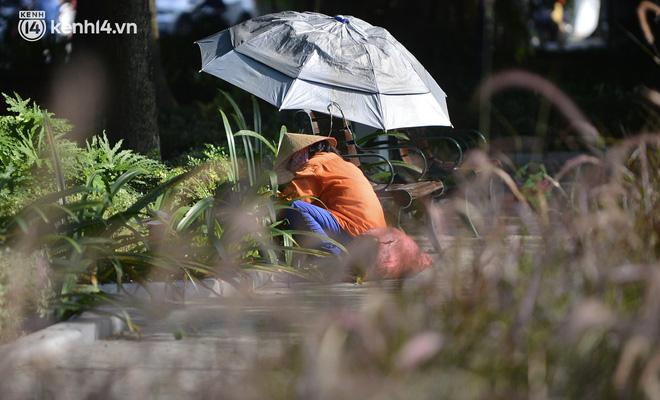 Ảnh: Hàng ghế ở hồ Gươm bị cỏ dại mọc bao quanh sau 2 tháng Hà Nội thực hiện giãn cách - Ảnh 4.