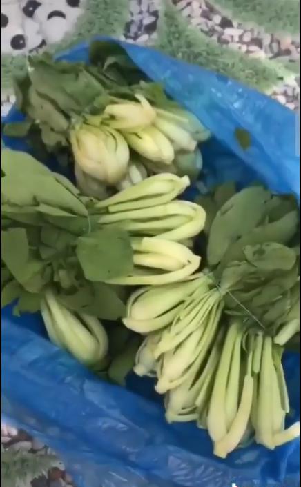 Đôi vợ chồng từ chối nhận rau xanh tươi, cầm cả túi ném ra cửa: Hỗ trợ vậy thì ăn gì? Xách về đi - Ảnh 3.