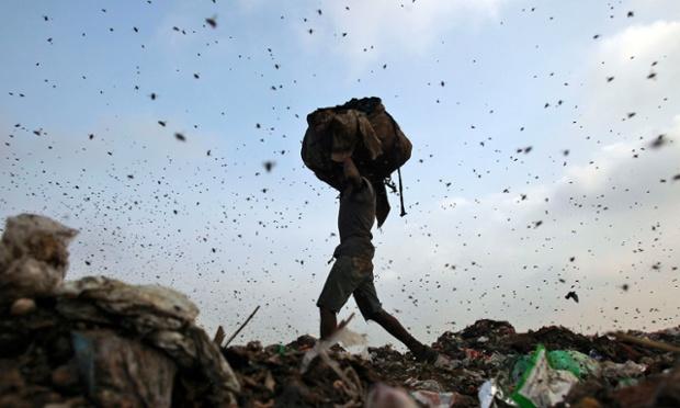 Côn trùng bay quanh một công nhân nhặt rác tại một bãi rác ở thủ đô New Delhi, Ấn Độ.