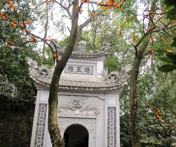 Loài hoa 'lạ' mọc trước lăng mộ vua Hùng