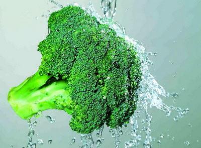 706111 Mầm súp lơ xanh giúp phòng chống bệnh ung thư dạ dày