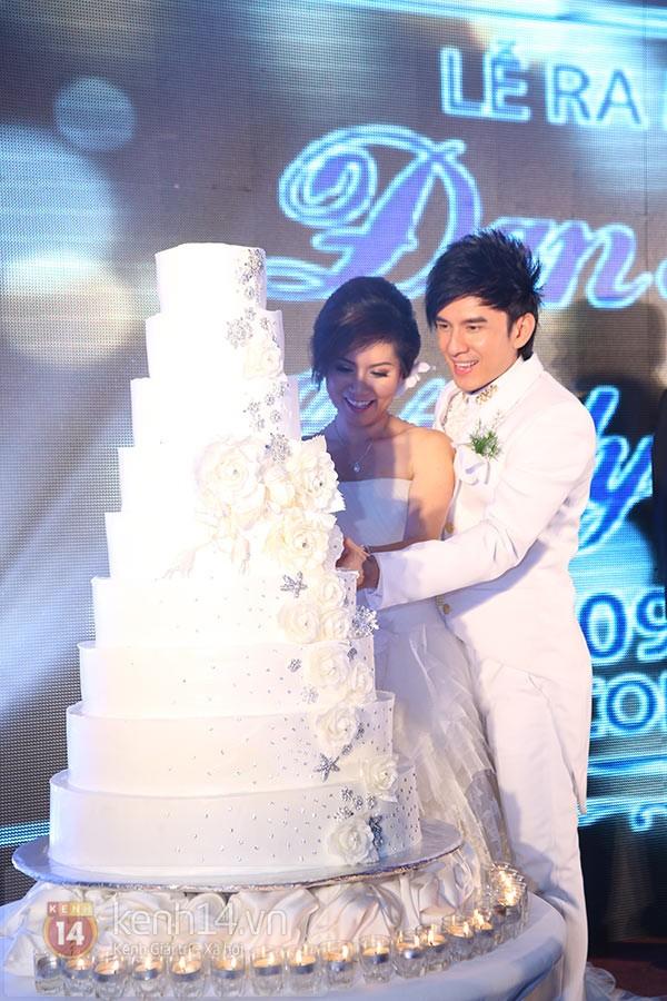 Dàn sao đến dự đám cưới Đan Trường ở Việt Nam 6