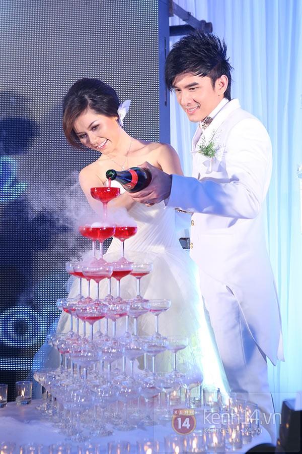 Dàn sao đến dự đám cưới Đan Trường ở Việt Nam 7