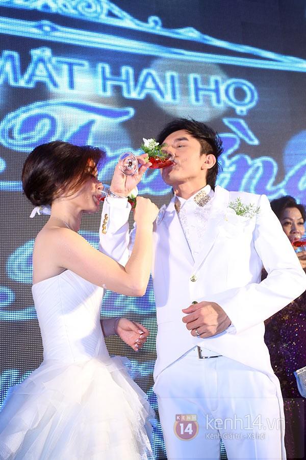 Dàn sao đến dự đám cưới Đan Trường ở Việt Nam 8