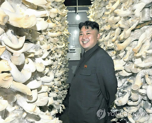 Nhà lãnh đạo Kim Jong-un chụp ảnh bên những giỏ nấm
