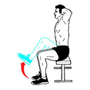 Các cơ bắp bạn không nên bỏ quên