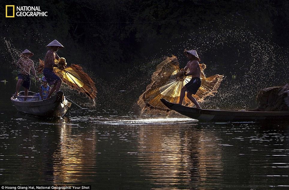 Ném cá: Đây là một trong những cách truyền thống để kiếm sống của những người sống tại tỉnh Thừa Thiên Huế, Việt Nam