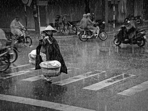 Gánh hàng rong giữa cơn mưa Hà Nội.