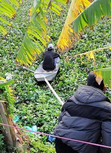 Anh Nguyễn Hữu Huy chồng nạn nhân dùng sào đẩy chiếc xuồng của ông cậu đi vì bèo đặc quá không bơi được