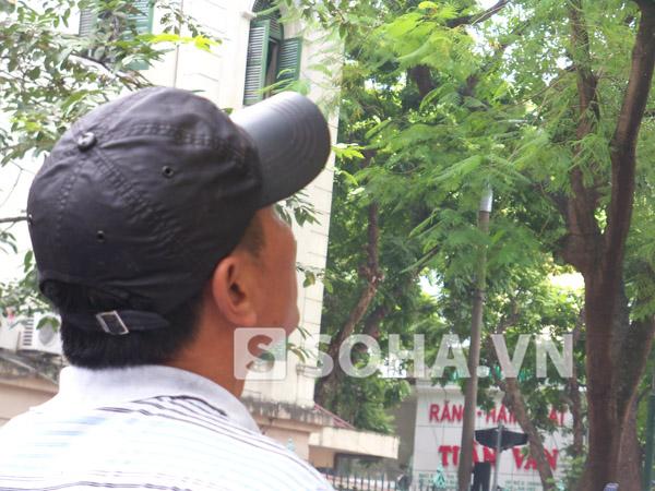 Anh Nguyễn Gia Mỹ, tổ trưởng một tổ công nhân Công ty cây xanh