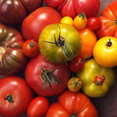 5 thực phẩm bổ dưỡng bạn nên ăn thường xuyên 5