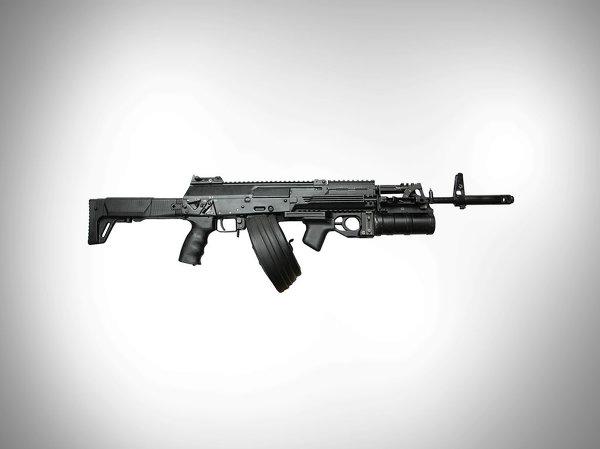 Súng trường tấn công AK-12 đang được thử nghiệm và dựa kiến sẽ được trang bị cho các lực lượng vũ trang và cảnh sát Nga vào năm 2014.