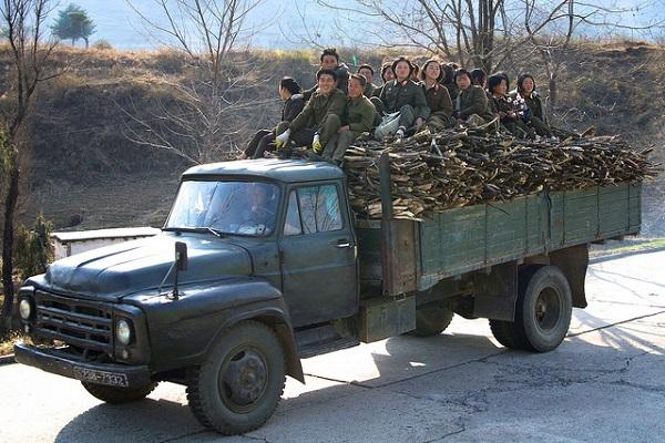 Có lẽ những chiếc xe đặc biệt này là nguyên nhân khiến quân đội Triều Tiên có hẳn những nhóm chuyên đi thu gom củi