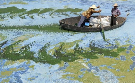Nước ô nhiễm ở Hồ Chaohu, thành phố Hợp Phì, tỉnh An Huy, Trung Quốc