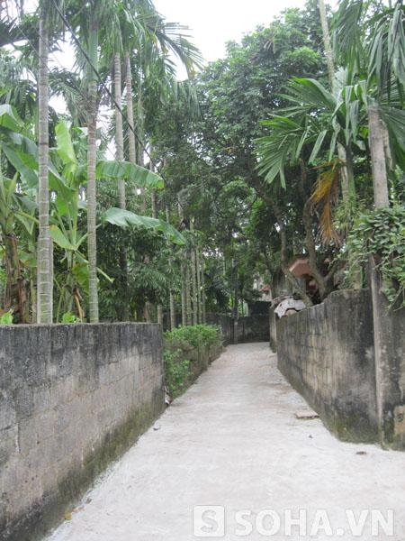 Lối vào nhà bà Nguyệt ở Xóm 5 (xã Nhân Khang, Lý Nhân, Hà Nam).