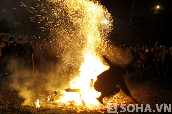 Than đỏ văng tứ tung ra chung quanh. Ngọn lửa như lại bốc cao hơn, ngùn ngụt bởi những tàn than đỏ đang bay lên.