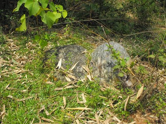Hòn đá hình con ngựa dưới núi