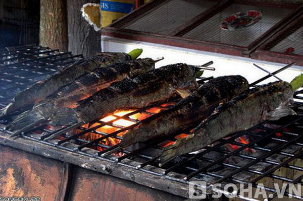 Cá quả nướng là món ăn khoái khẩu của cụ Nhẽ. Theo cụ Nhẽ, cá là thức ăn lành.
