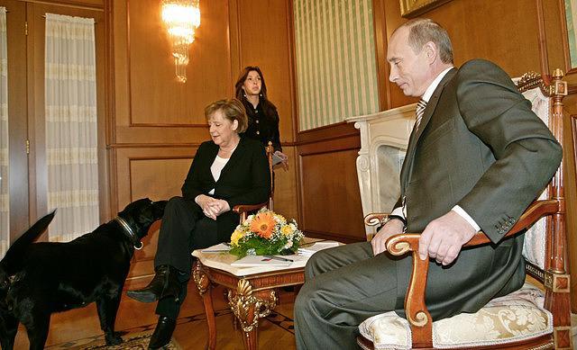 Koni tiến đến hít ngửi Thủ tướng Đức, khiến bà Merkel, vốn là người sợ chó, có vẻ khá căng thẳng