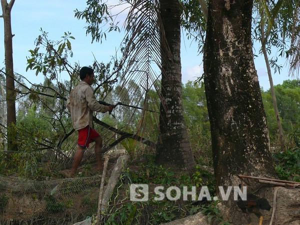 Người dân dùng STC để đi bắn chim