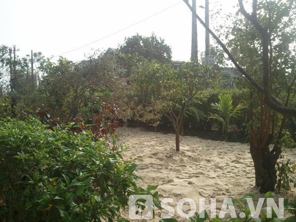 Do ảnh hưởng của cơn bão số 10 vừa qua nên nhiều cây cối trong vườn nhà Đại tướng đã bị hư hại.