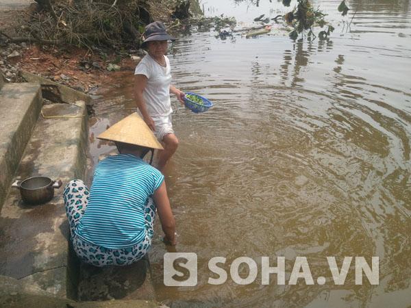 Bến nước sông Kiến Giang với những hình ảnh hết sức thân thuộc, mộc mạc.