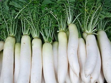 Củ cải trắng: Nhân sâm giá rẻ 2