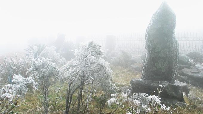 Băng tuyết phủ trắng cỏ cây trên khu du lịch Mẫu Sơn
